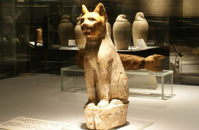 Statue and mummy of a cat