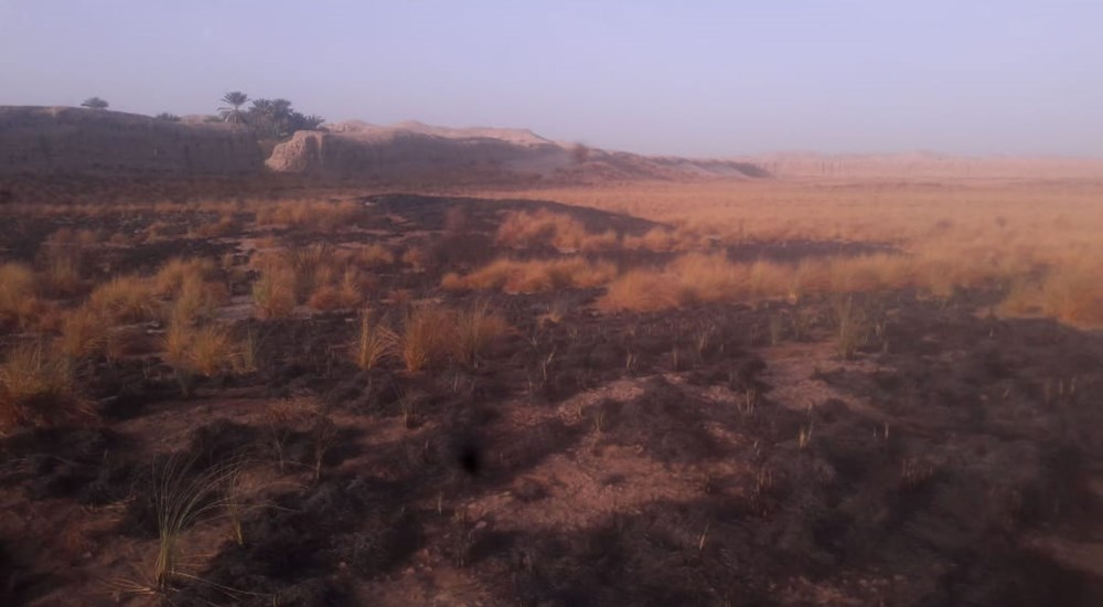 Put out a limited fire of Weeds far away about 300 meters from the ancient Cape area